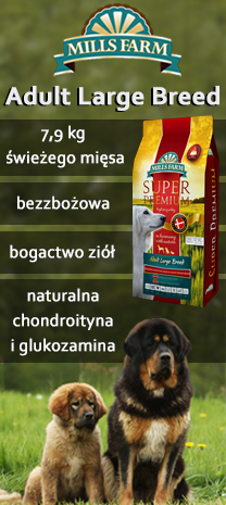 (M) mills farm puppy large breed